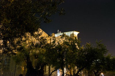 The Garden of Gethsemane at Night