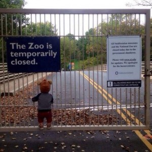 Zoo Closed